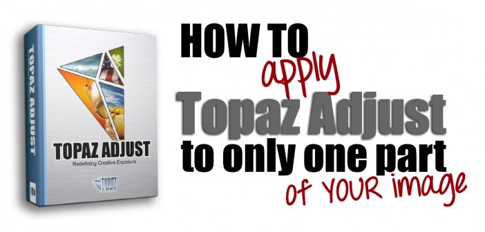 How to apply Topaz Adjust to only one part of your image