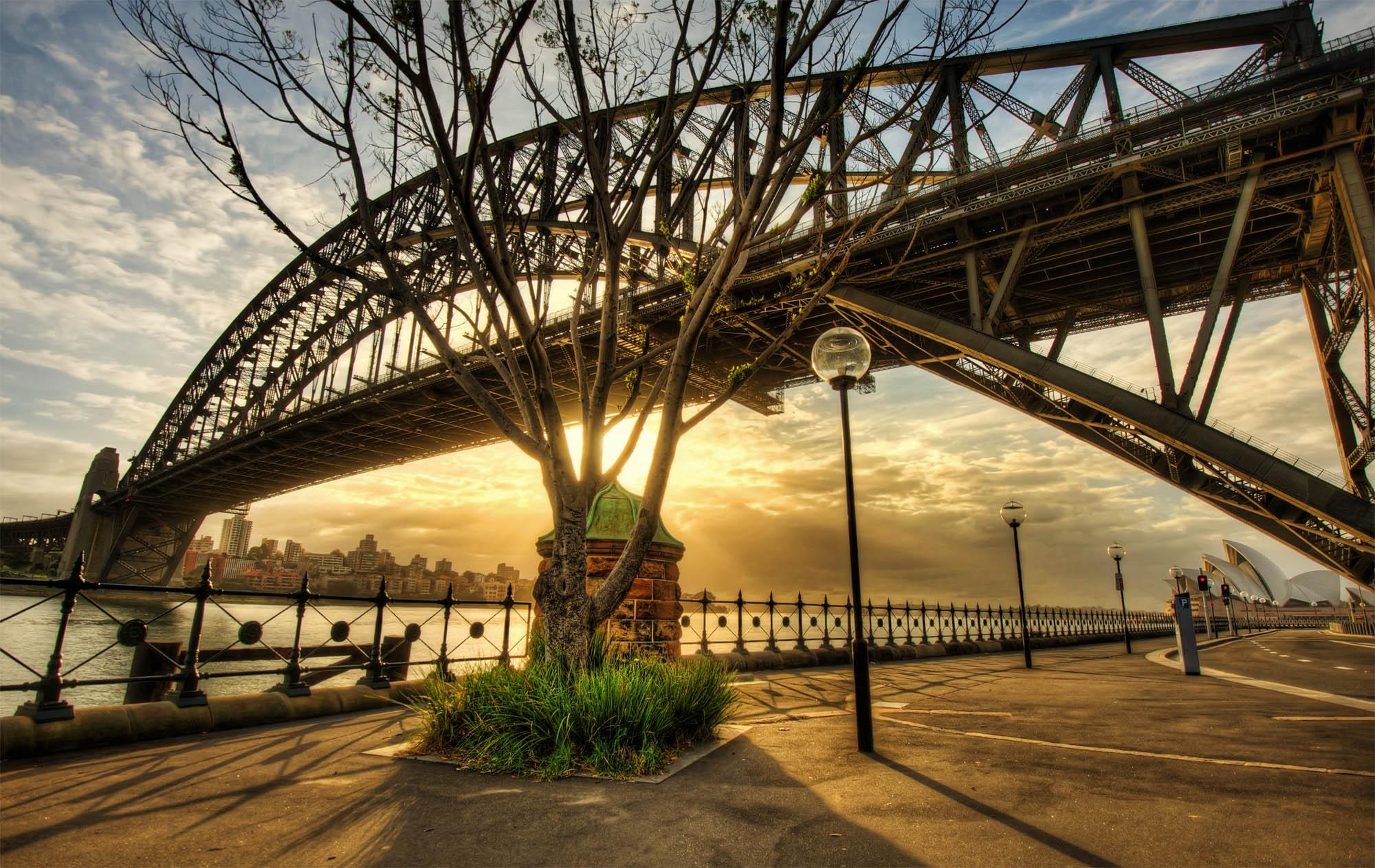 Sunkissed Bridge Sydney Harbour Bridge
