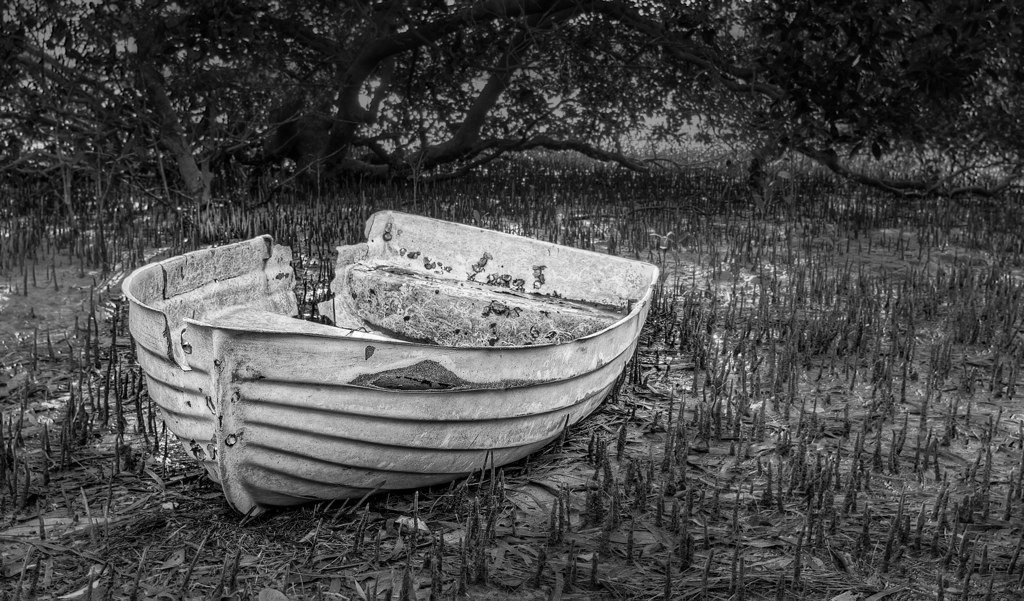 shipwrecked black and white photography