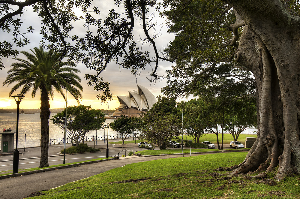 Sydney Opera Views