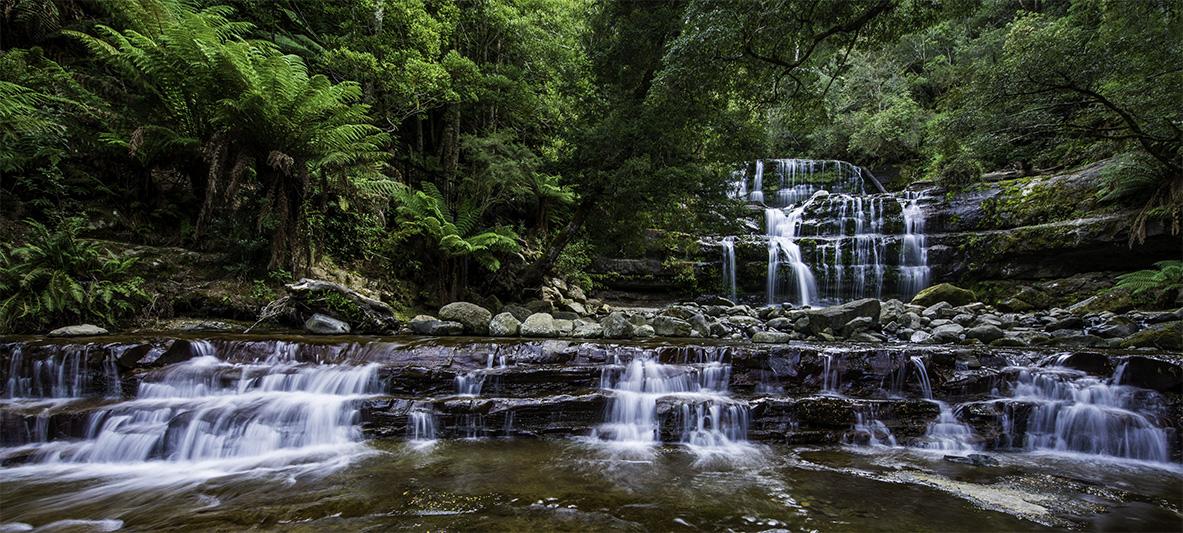 Liffey Falls Tasmania