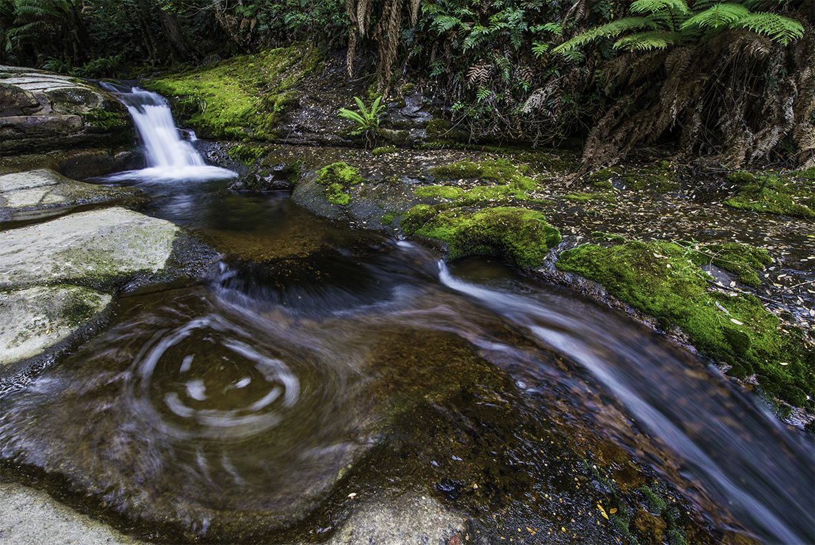 Liffey Falls Cascades Tasmania